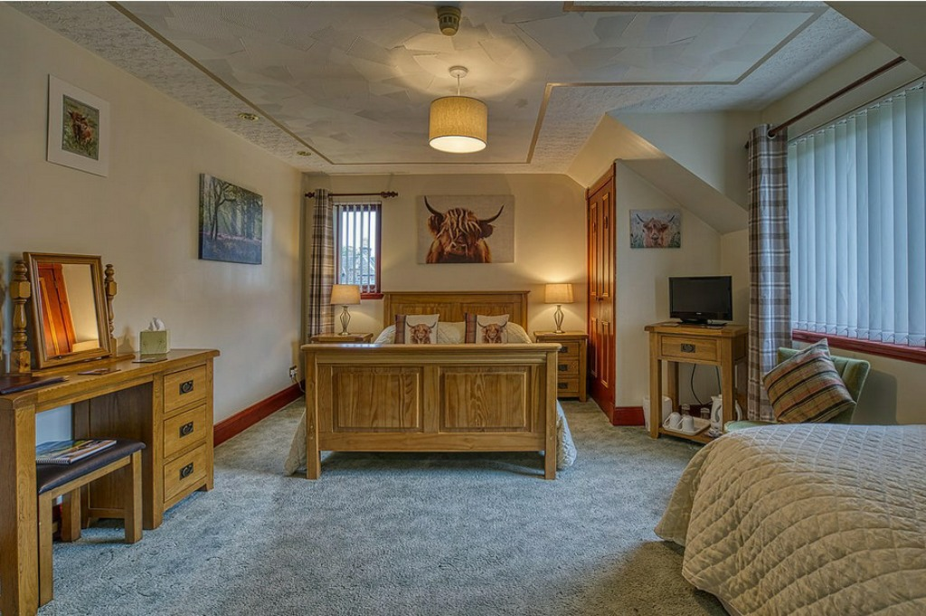 Highland Coo Room
