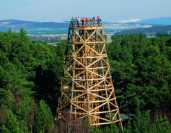 Activity Landmark Forest Theme Park