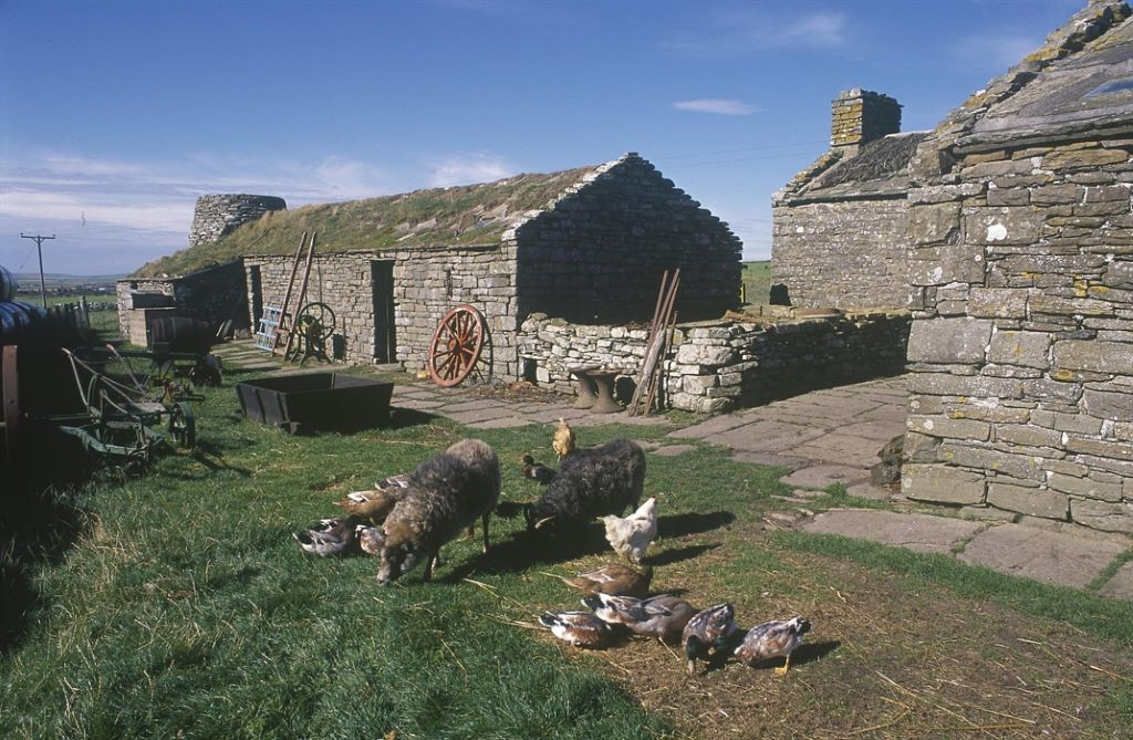 Activity Corrigall Farm Museum