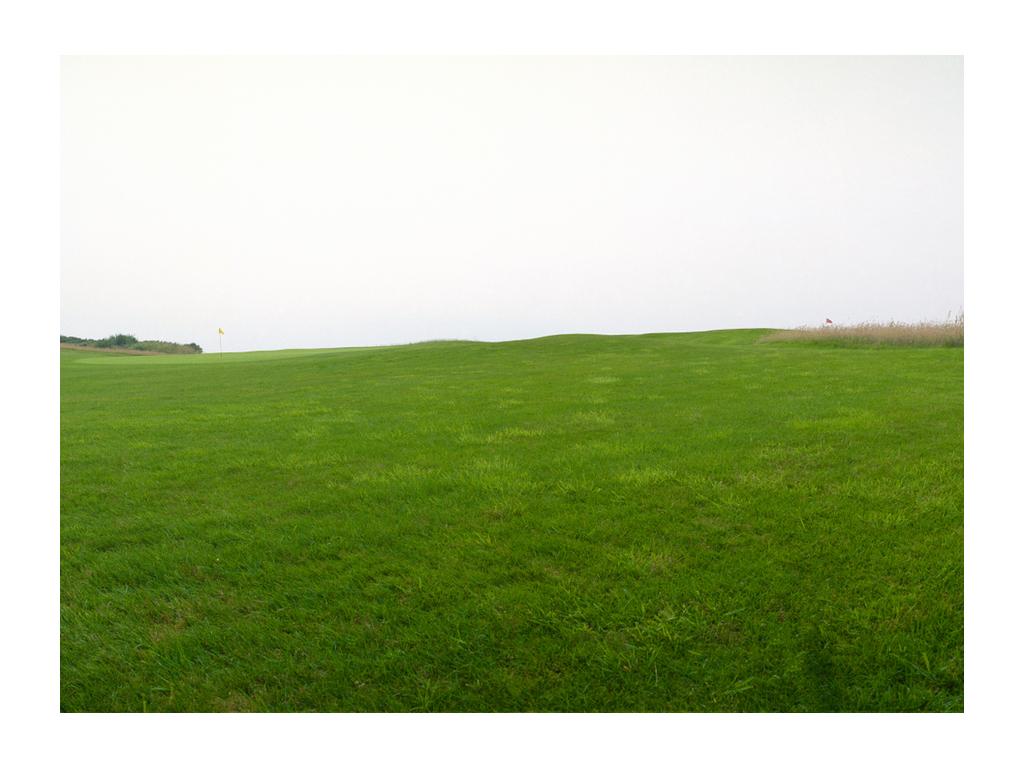 Activity Royal Dornoch Golf Club