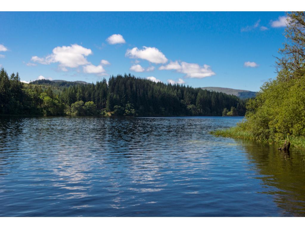 Activity Loch Ard Forest