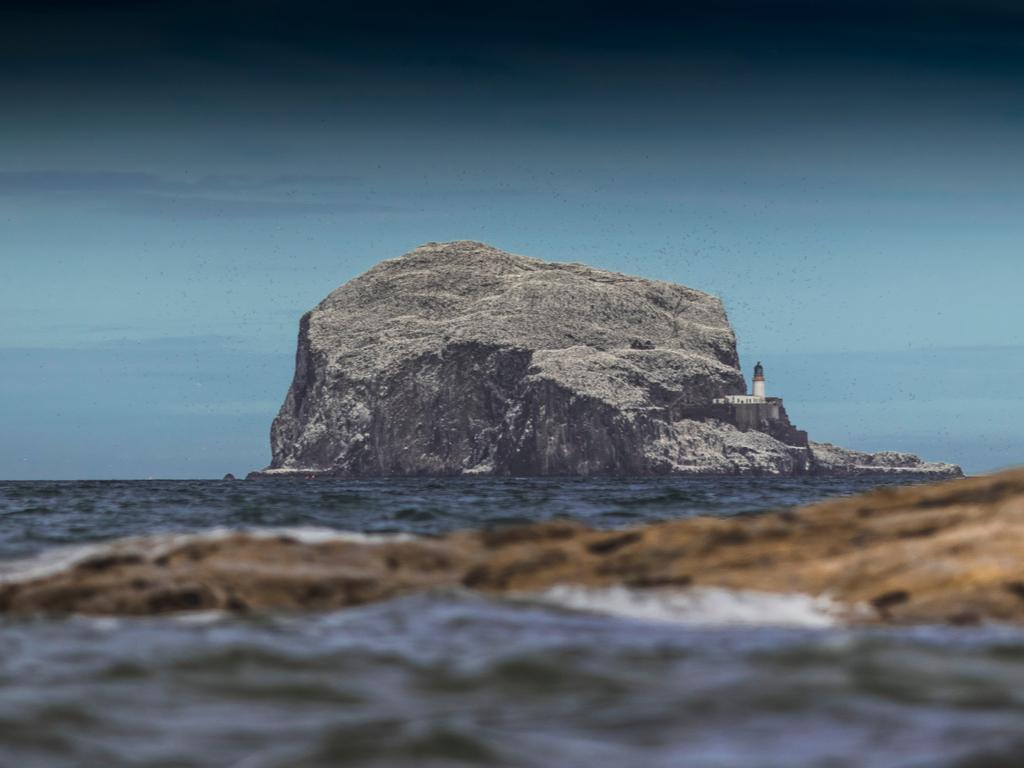 Activity Bass Rock
