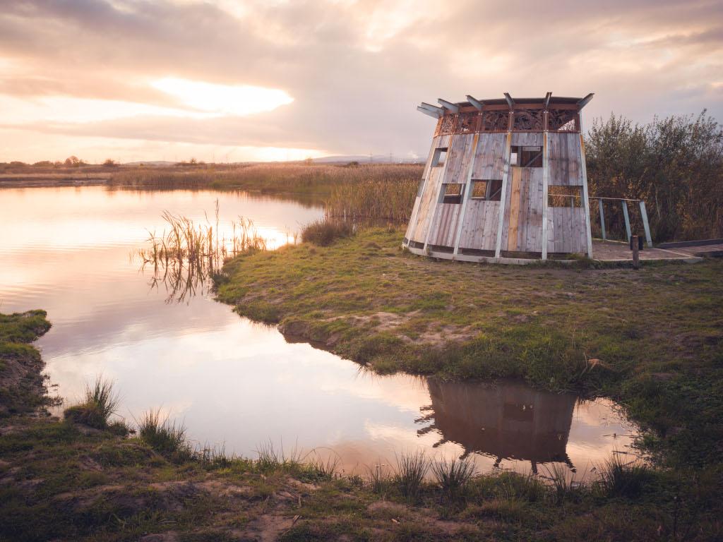 Activity Black Devon Wetlands