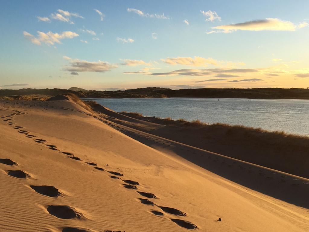 Activity Sands of Forvie