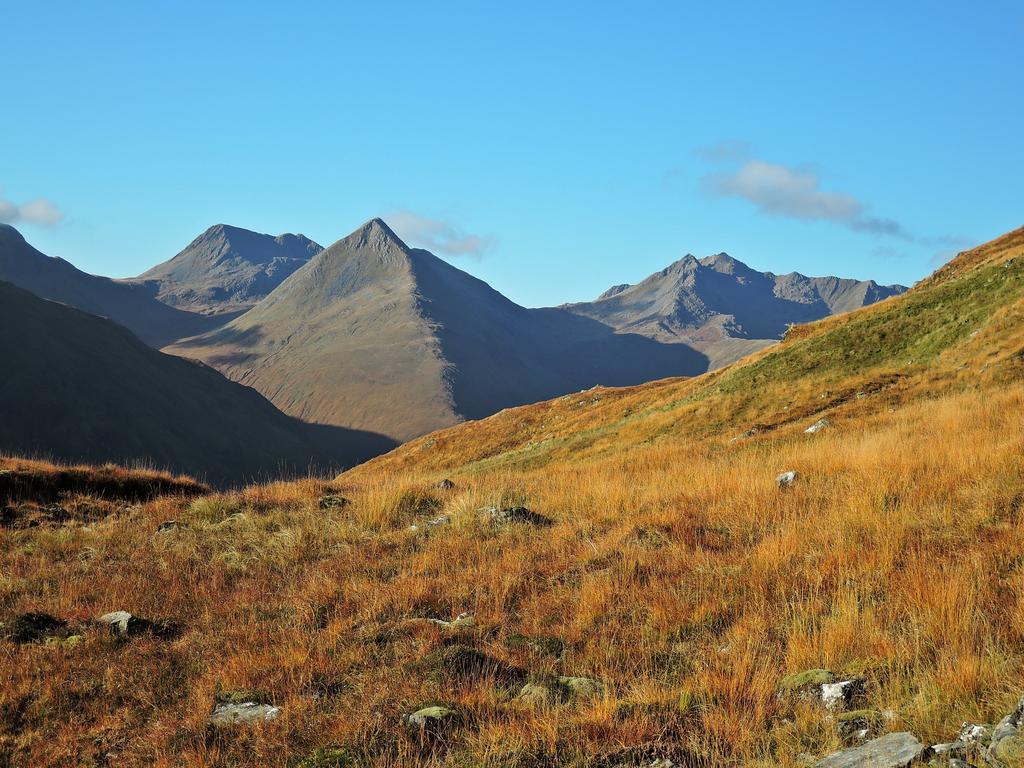 Activity The Saddle (Munro)